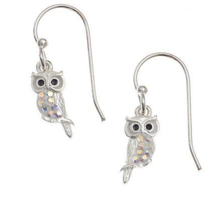 Pretty AB Crystal Owl Earrings